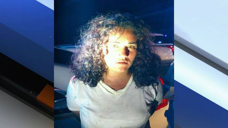 Martin County deputies capture suspect who injured mini-van owner, stole his vehicle