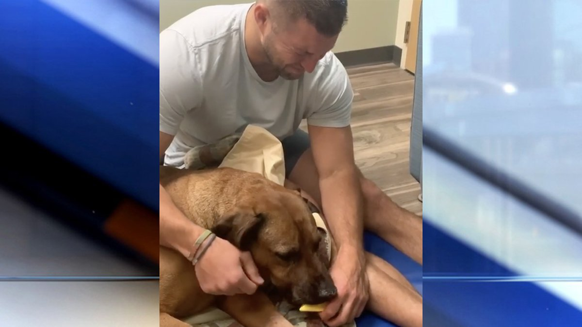 Former NFL and Florida Gators quarterback Tim Tebow is mourning the loss of his beloved dog,...